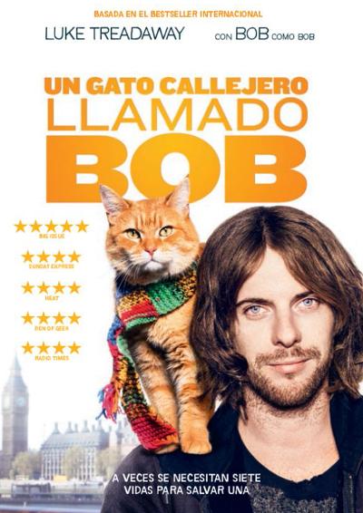 Un gato callejero llamado Bob.
