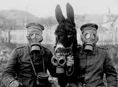 Foto de la máscara antigás.